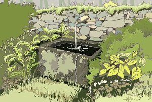 o zahradách